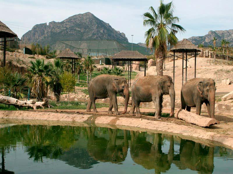 Природный парк Терра Натура